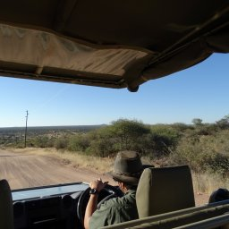 Namibië-okonjima-resized (9)