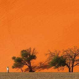 Namibië-Sossusvlei-hoogtepunt (3)