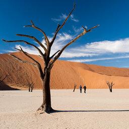 Namibië-Sossusvlei-hoogtepunt (7)
