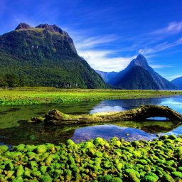 Nieuw-Zeeland - Milford Sound