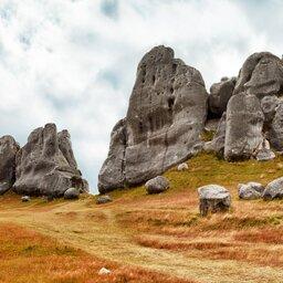 Nieuw-Zeeland - The Castle hill - Southern Alps - Arthurs Pass