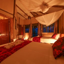 Oeganda-Bwindi Impenetrable Forest-Gorilla Safari Lodge (1)