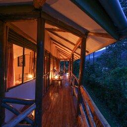 Oeganda-Bwindi Impenetrable Forest-Gorilla Safari Lodge (20)