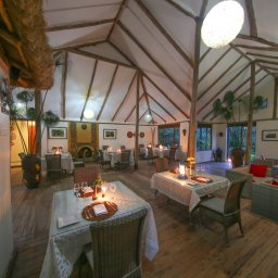 Oeganda-Bwindi Impenetrable Forest-Gorilla Safari Lodge (6)