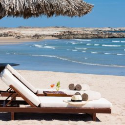 Oman-Dhofar Salalah-Alila Hinu Bay-strand met ligzeteld