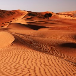 Oman-Wahiba Sands2