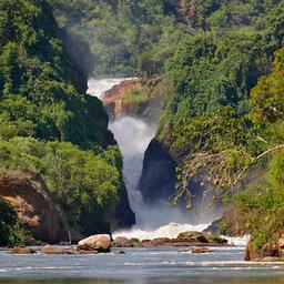 paraa_safari_lodge_murchison_falls