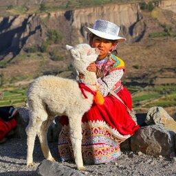Peru - Valle del Colca - Arequipa - Colca canyon (7)