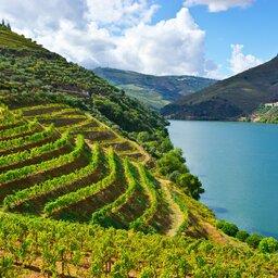Portugal - Douro vallei  (5)