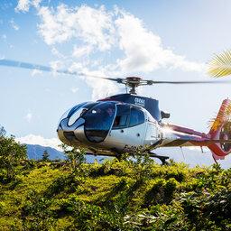 rsz_1la-reunion-diana-dea-lodge-helicopter