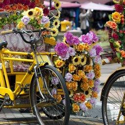 rsz_1maleisië-malakka-excursie-fietstocht-fietsen