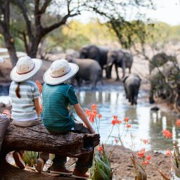 rsz_amazing-family-safari-kindjes-mama-met-kindjes-hoedjes