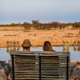 rsz_amazing-met-zn-twee-safari_5