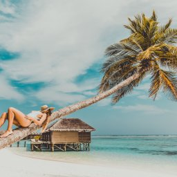 rsz_malediven-vrouw-op-palmboom