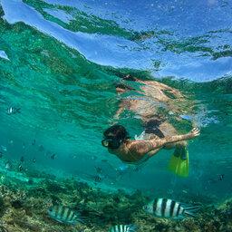 rsz_mauritius-snorkelen