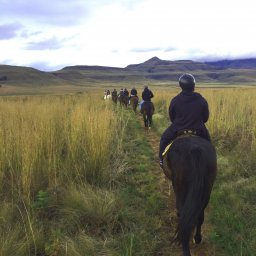 rsz_zuid-afrika-drakensbergen-montusi-mountain-lodge-paardrijden