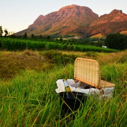 rsz_zuid-afrika-kaapse-wijnlanden-hoogtepunt-picknick