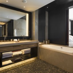 RWPPN_Grand Premier Bathroom