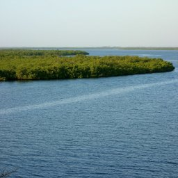Senegal-Hoogtepunt5-Sine Saloum Delta