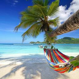 Seychellen-algemeen-hangmat-palmboom-tropisch-strand