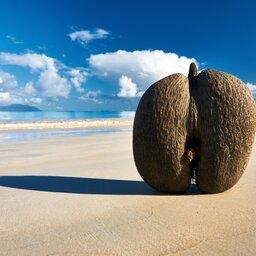 Seychellen-Hoogtepunt-reseized-praslin (3)
