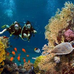 Seychellen-Hoogtepunt-reseized-praslin dive