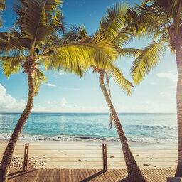 Seychellen-Mahe-Carana-Beach-palmbomen-strand