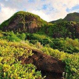 Seychellen-Mahé-Excursie-Anse-Major-nature-trail