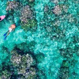 Seychellen-Private-eilanden-BlueSafari-Cosmo-Eco-Camp-koppel-snorkelen