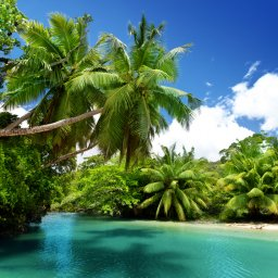 Seychellen-strand-foto 2