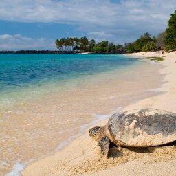 Seychellen-Variety Cruise (4)