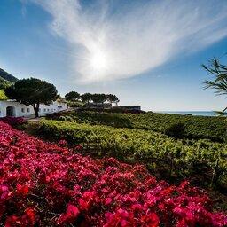 Sicilie-Eolische-Eilanden-Capofaro-Locanda-&-Malvasia-hotelgebouw-omgeving