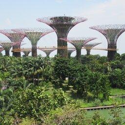 Singapore-Excursie-Discover-Singapore-1