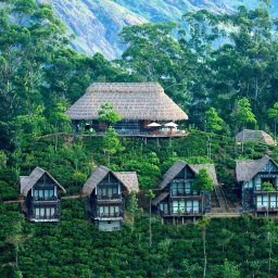 Sri Lanka-Ella-hotel 98 Acres Resort