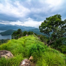 Sri-Lanka-Knuckles-Excursie-Knuckles-Mountain-Hike-3