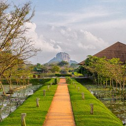 Sri-Lanka-Sigiriya-Hotel-Water-Garden-omgeving3