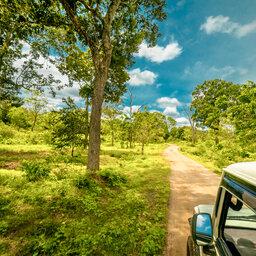 Sri-Lanka-Yala-Excursie-Safari-Yala-National-park 3