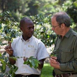 Tanzania-Arusha-Coffee-lodge-plantage-gids