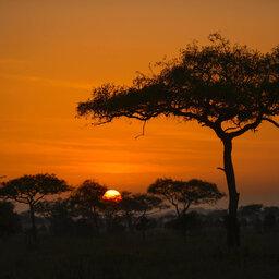Tanzania-Serengeti NP-Asanja-Moru-zonsondergang-natuur