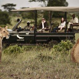 Tanzania-Serengeti NP-&Beyond-Kleins-Camp-safari-jeep-leeuwen