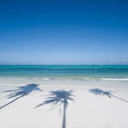 Tanzania-Zanzibar-Baraza Resort (7)