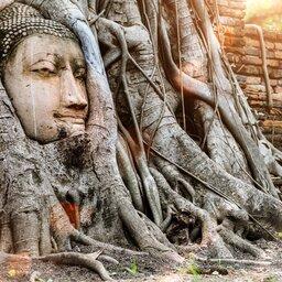 Thailand- Ayutthaya (3)