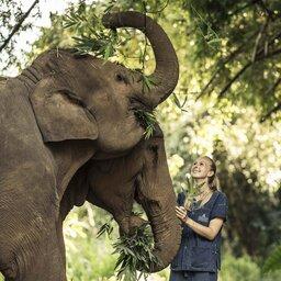 Thailand - Chiang Rai - Anantara Golden Triangle Elephant Camp & Resort (8)