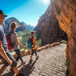 Verenigde staten - USA - VS - Utah - Zion National Park (7)
