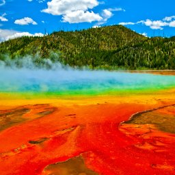 Verenigde staten - USA - VS - Wyoming - yellowstone national park (13)