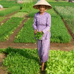 Vietnam-Hoi An-Excursie-From-Farming-To-Fishing-experience-day-trip-1