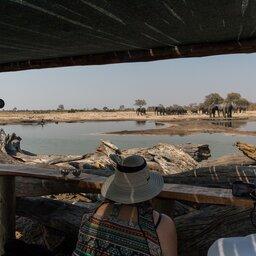 Zimbabwe-Hwange NP-Little Makalolo Camp (16)