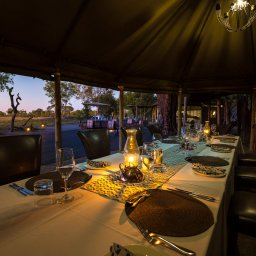 Zimbabwe-Hwange NP-Little Makalolo Camp (5)