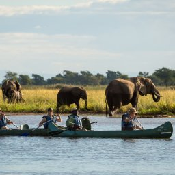 Zimbabwe-Mana Pools National Park (6)