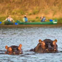 Zimbabwe-Mana Pools National Park (7)